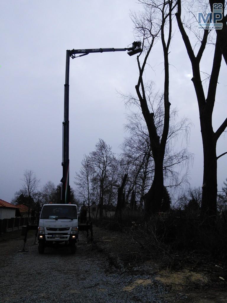 kácení stromů 30 metrů