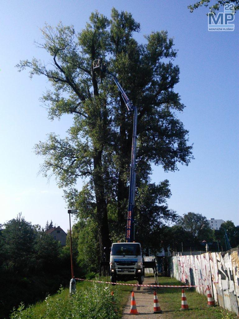 arborista plošina